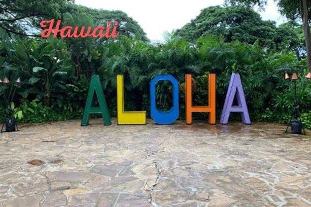 Hawaii aloha signs