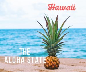 A Hawaiian pineapple on the beach